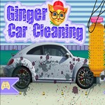 Ginger Car Cleaning